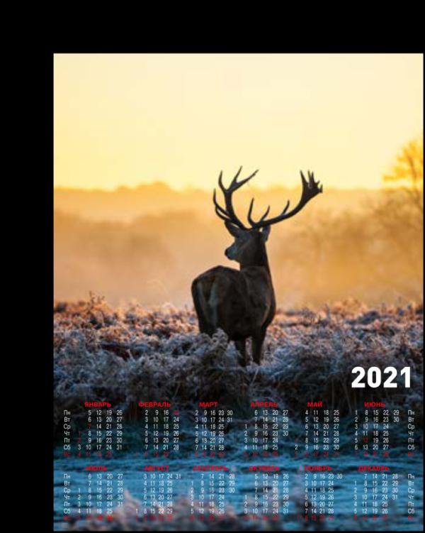 Календарь-плакат А2